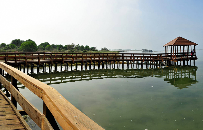 Isole della laguna Veneziana e Delta del Po 5